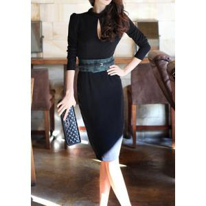 Sexy Turtle Neck Long Sleeve Backless Bodycon Women's Dress