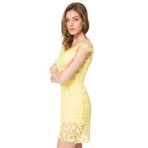 Sexy Scoop Neck Short Sleeve Mesh Splicing Lace Dress For Women -