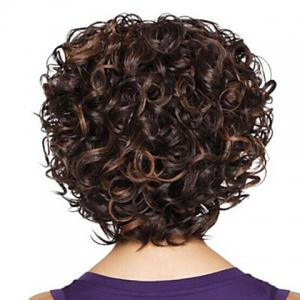 Fashion Heat Resistant Soft Curly Mix Color Capless Synthetic Wig For Women -