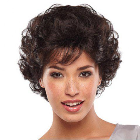 Sale Fluffy Attractive Side Bang Short Deep Wavy Black Brown Heat Resistant Women's Synthetic Wig