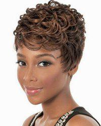 Fashion Full Bang Brown Mixed Spiffy Short Curly Synthetic Capless Wig For Women