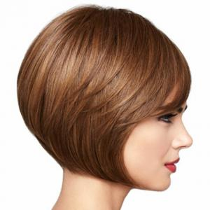 Popular Short Hairstyle Side Bang Fluffy Straight Capless Heat-Resistant Women's Brown Bob Wig -