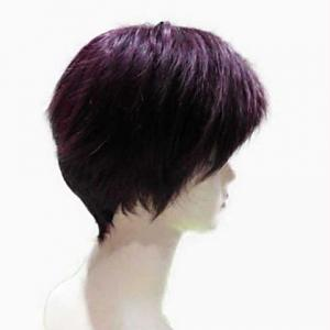 Natural Straight Top Quality Synthetic Hair Side Bang Mixed Color Casual Style Women's Short Wig -