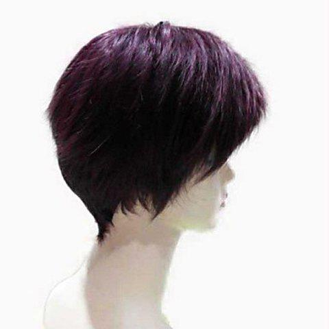 Shops Natural Straight Top Quality Synthetic Hair Side Bang Mixed Color Casual Style Women's Short Wig - COLORMIX  Mobile