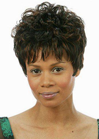 Store Fashion Fluffy Full Bang Brown Mixed Noble Short Curly Synthetic Capless Wig For Women