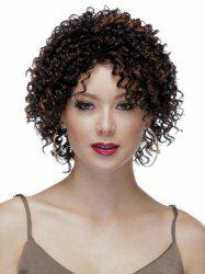 Highlights Synthetic Hair None Bang  Attractive Stylish Capless Women's Short Curly Afro Wig