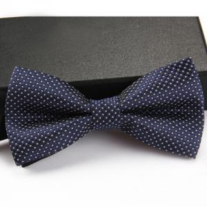 Stylish Small Dots Pattern Bow Tie For Men