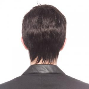 Fluffy Straight Short Capless Fashion Black No Bang Heat Resistant Synthetic Men's Wig - BLACK