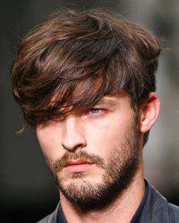 Deep Brown Mixed Stylish Synthetic Short Inclined Bang Fluffy Natural Wavy Capless Wig For Men -