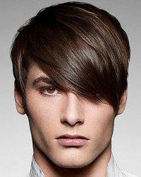 Fashion Silky Straight Short Synthetic Stunning Deep Brown Capless Inclined Bang Wig For Men -