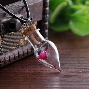 Dry Flower Cone Shape Bottle Necklace