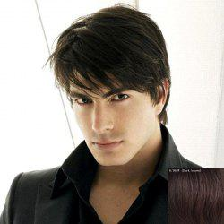 Masculine Inclined Bang Capless Trendy Short Fluffy Natural Straight Human Hair Wig For Men -