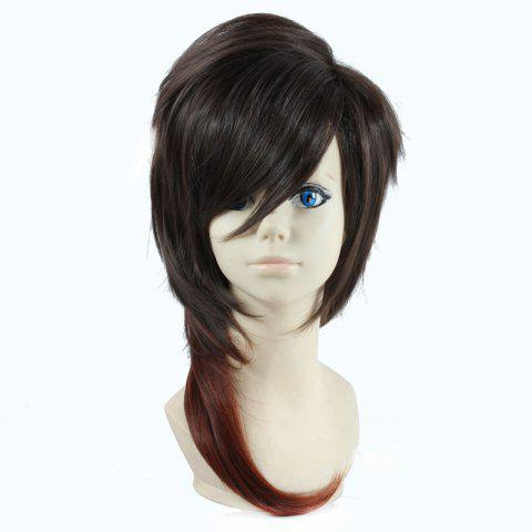 Shops Two-Tone Ombre Fluffy Layered Natural Straight Vogue Long Dai Kurikara Cosplay Wig