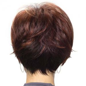 Women's Fashion Capless Side Bang Human Hair Straight Wig -