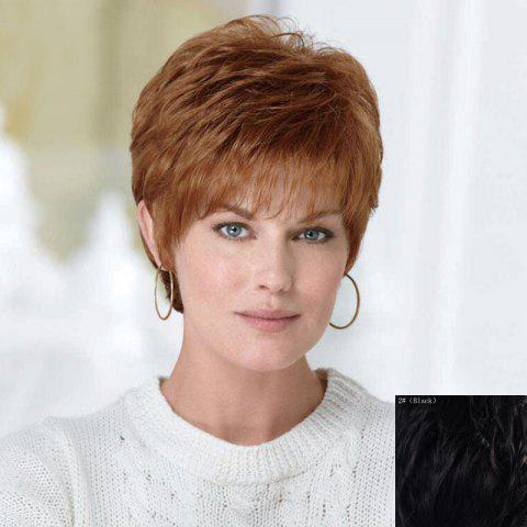 Fluffy Curly Short Human Hair Wig For Women 173869601