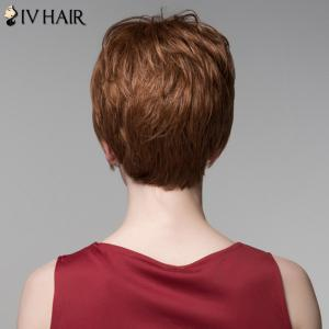 Fluffy Inclined Bang Human Hair Short Wig For Women - AUBURN BROWN