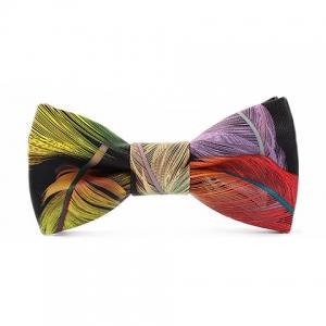 Stylish Multicolor Feathers Pattern PU Bow Tie For Men