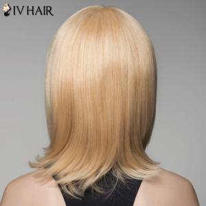 Ladylike Cheveux Straight Side Bang perruque pour les femmes - / Brown d'Or avec Blonde