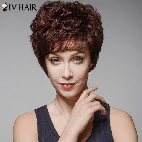 Chic Skilful Human Hair Curly Full Bang Short Wig For Women DARK BROWN