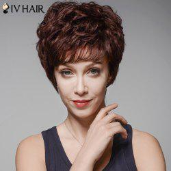 Skilful Human Hair Curly Full Bang Short Wig For Women - DARK BROWN