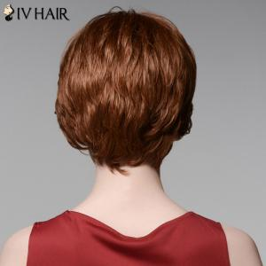 Siv Hair Elegant Short Capless Shaggy Wavy Side Bang  Human Hair Wig - AUBURN BROWN #30