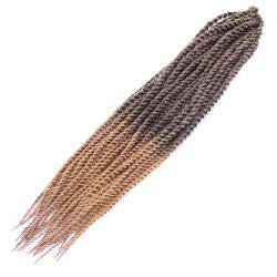 Stylish Two-Tone Ombre Long Synthetic Dreadlock Braided Hair Extension For Women - COLORMIX