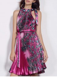 Fashionable Stand Collar Sleeveless Printed Pleated Women's Dress -