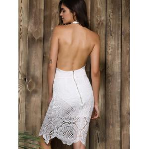 Halter Backless Lace Panel Sheath Cocktail Dress -
