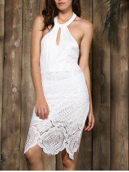 Halter Backless Lace Panel Sheath Cocktail Dress - WHITE