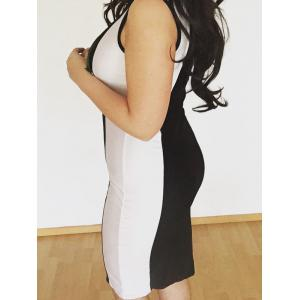 U-Neck Sleeveless Color Block Fitted Dress -