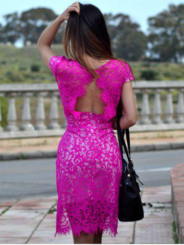 Online Sexy V-Neck Lace Embroidered Short Sleeve Bodycon Dress - L ROSE Mobile