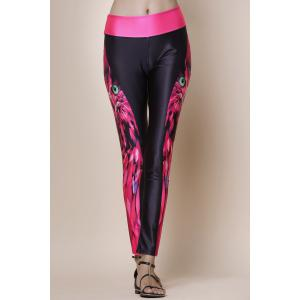Fashionable Owl Print Color Splicing Skinny Women's Pants - Black And Rose Red - One Size(fit Size Xs To M)