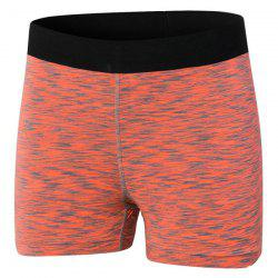 Active Elastic Waist Running Sports Shorts