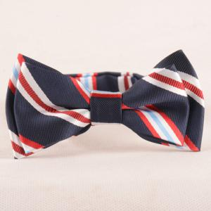 Stylish Stripe Pattern Purplish Blue Double-Deck Bow Tie For Boys - Purplish Blue - L