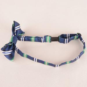 Stylish Stripe Pattern Blue Double-Deck Bow Tie For Boys - BLUE