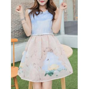 Simple Style Women's Belted Sleeveless Organza Colorful Swan Print Dress -