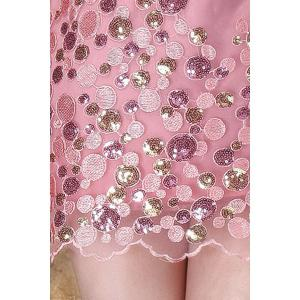 Scoop Neck Sequined Embroidered Dress -
