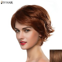 Graceful Side Bang Siv Hair Fluffy Straight Anti Alice Human Hair Women's  Short Wig -