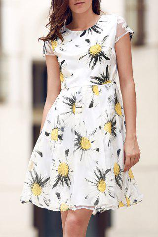 Sale Floral Print Fit and Flare Dress