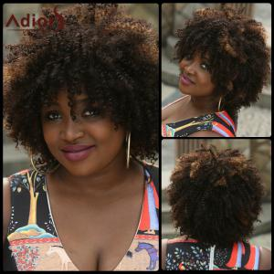 Fashion Fluffy Afro Curly Black Brown Mixed Capless Synthetic Wig For Women - Colormix