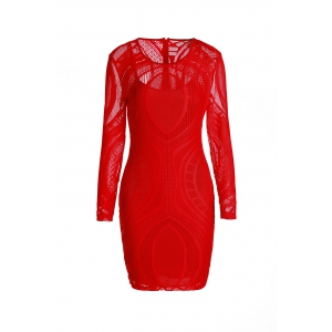 See Thru Long Sleeve Mini Sheath Dress