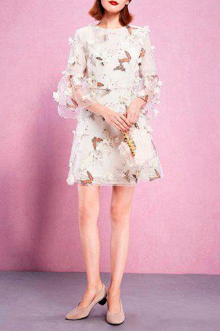 Outfit Camisole Dress and Butterfly Print Mesh Dress Twinset