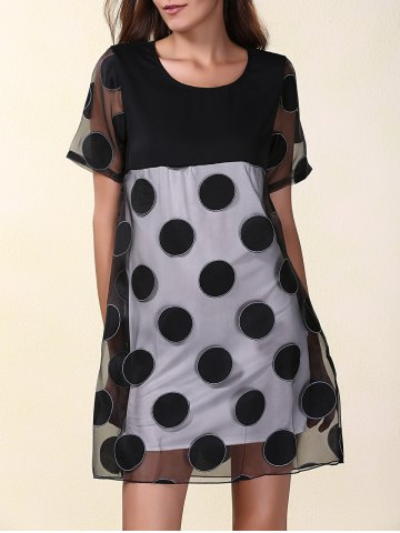 Mesh Panel Polka Dot Short Sleeve Dress