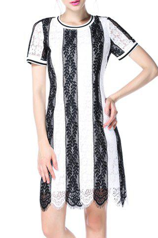 Fancy Striped Lace Dress
