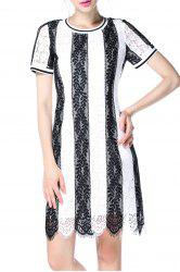 Striped Lace Dress -