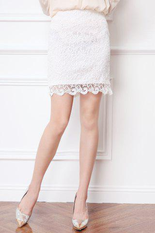 Fancy High Waisted Sheath Lace Skirt