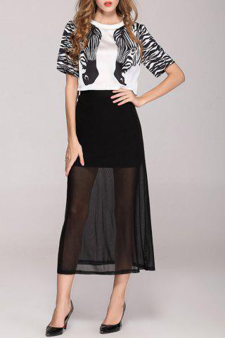 Discount Zebra Print Tee and Sheer Skirt