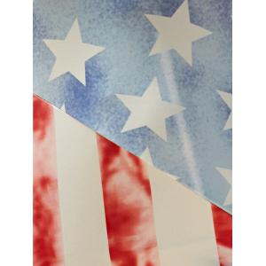 Vest American Flag Print Fringed Patriotic Midi Dress -