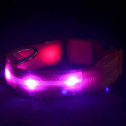 Eco-Friendly LED Luminous Night Walk Metal Buckle Collar For Dogs