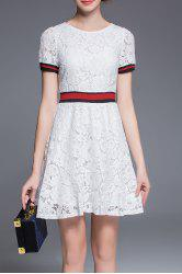 Round Collar Lace A Line Dress -